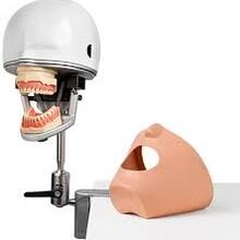 Стоматологические фантомы и комплектующие