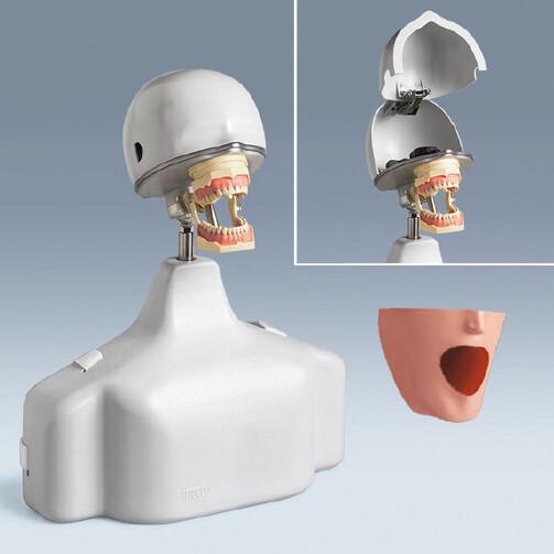 Стоматологический тренажер РК-1 HGB